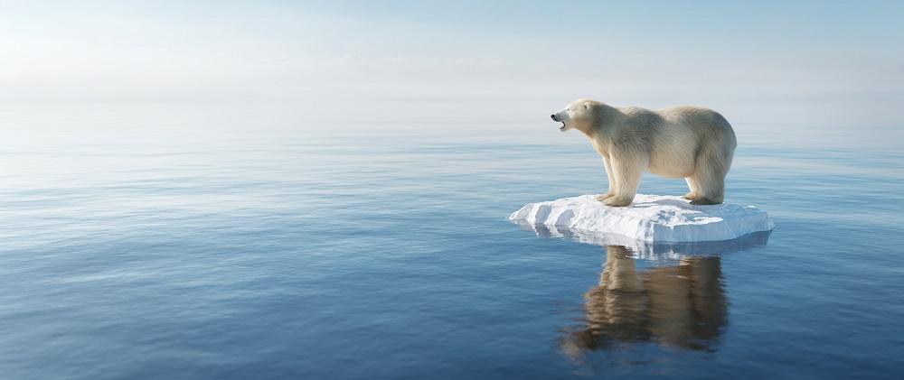 地球温暖化とウイルスのリスク